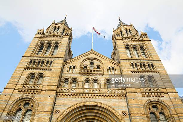 museum of natural history in london - natural history museum london stock pictures, royalty-free photos & images