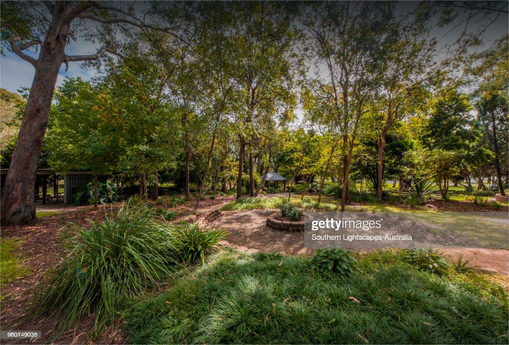Musgrave Park, Southport, Gold coast, Queensland, Australia. : Stock-Foto