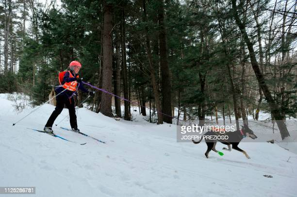 Musher Amy de Wolski takes part in the Skijor race during the second annual Blue Mountain Sled Dog and North Country Musher's mid distance Sled Dog...