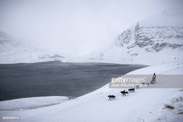 A musher and his sledding dogs race a stage in ValCenis during the 12th edition of La Grande Odyssee sledding race across the Alps on January 17 2016...