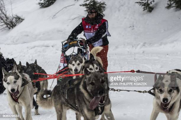 TOPSHOT A musher and his sledding dogs race a stage in ValCenis during the 14th edition of 'La Grande Odyssee' sledding race across the Alps on...