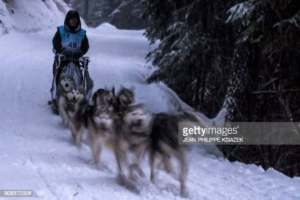 A musher and his sledding dogs race a stage in ValCenis during the 14th edition of La Grande Odyssee sledding race across the Alps on January 21 in...