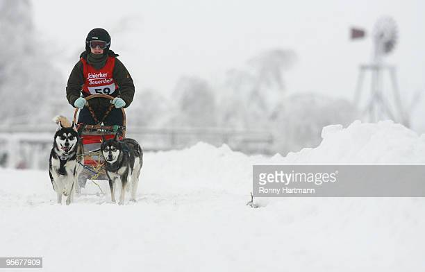 Musher Julia Becke rides her sled dogs during the 2010 Pullman City Quest on January 10 2010 in Hasselfelde Germany The competition counts as one...