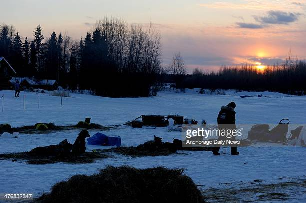 A musher walks at the Nikolai checkpoint during the Iditarod Trail Sled Dog Race at sunrise on Wednesday March 5 in Alaska