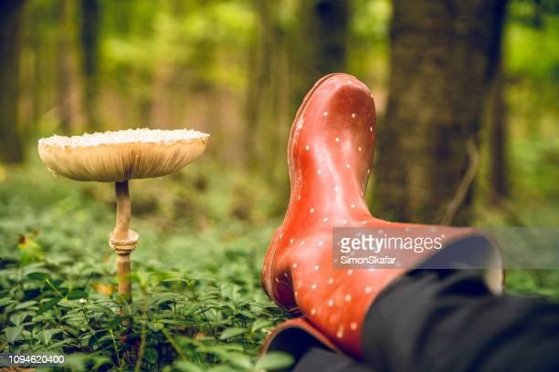 ウェリントンとキノコと人間の足 - ブーツイン ストックフォトと画像