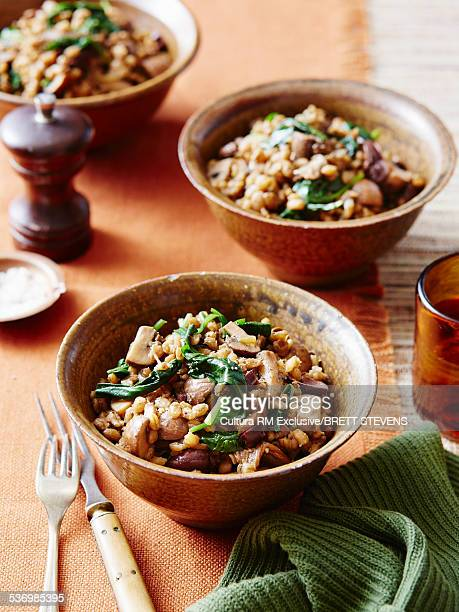 Mushroom barley risotto, wilted spinach, salt, pepper and  swiss brown mushrooms