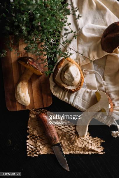 mushroom boletus on cutting board - fungo foto e immagini stock