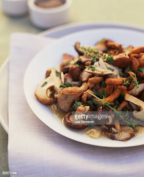mushroom entree - shiitake mushroom stock pictures, royalty-free photos & images