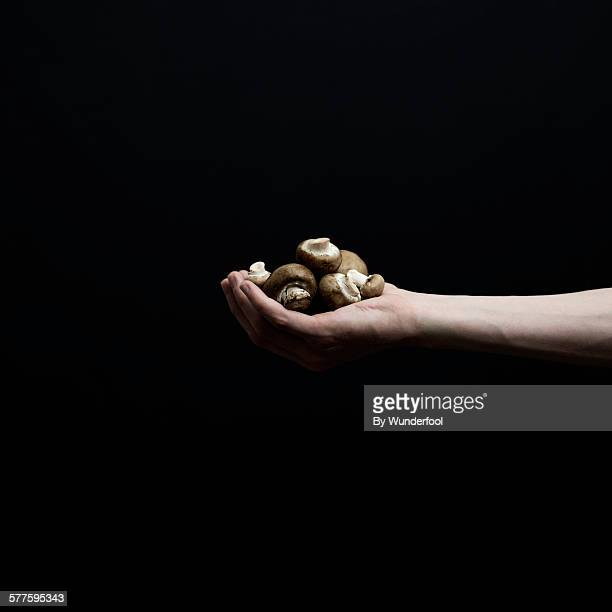 Mushrooms in a hand in front of a black background