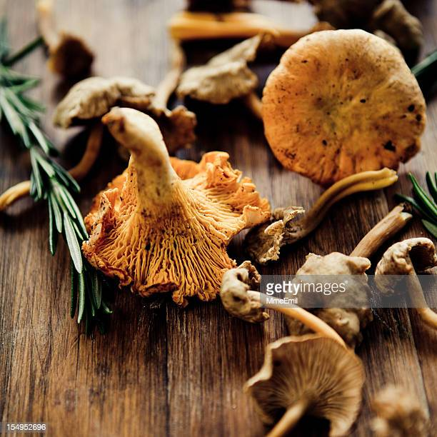 Mushrooms on a wooden table for cooking