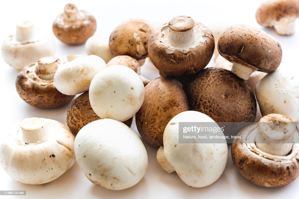 Mushrooms on White Background. Fresh Organic White and Crimini Mushrooms Close Up on White Background. : Stock Photo