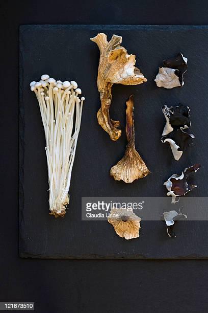mushrooms - enoki mushroom stock pictures, royalty-free photos & images