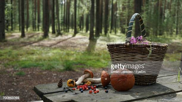 Mushrooms With Strawberries And Blueberries By Wicker Basket On Table At Forest
