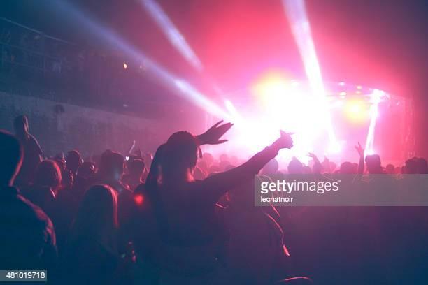 Music festival concert crowd