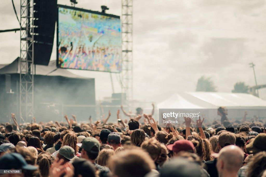 Music Festival Crowd : Stock Photo