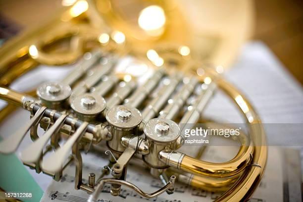 Musik horns