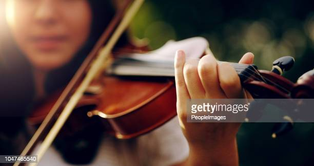 music lifts the spirit and enlightens the soul - stringed instrument stock pictures, royalty-free photos & images