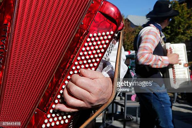 60 Top French Accordion Player Pictures, Photos and Images