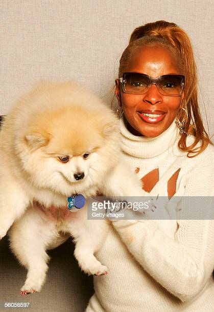 Musical artist Mary J Blige poses for a portrait to promote the Tsunami relief charity single a cover of the Sir Eric Clapton ballad 'Tears In...