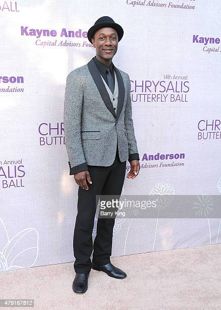 Musician Aloe Blacc attends the 14th annual Chrysalis Butterfly Ball sponsored by Audi Kayne Anderson Lauren B Beauty and Z Gallerie on June 6 2015...