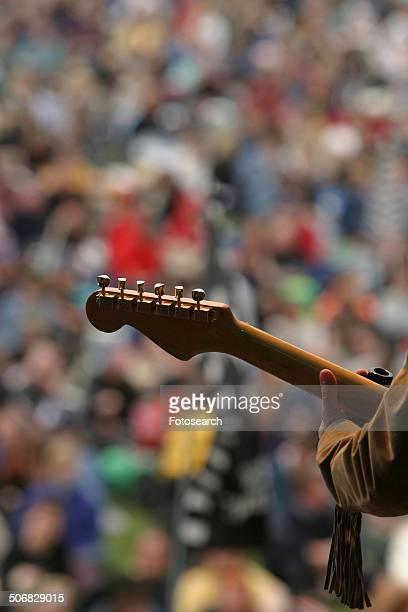 Musician at concert