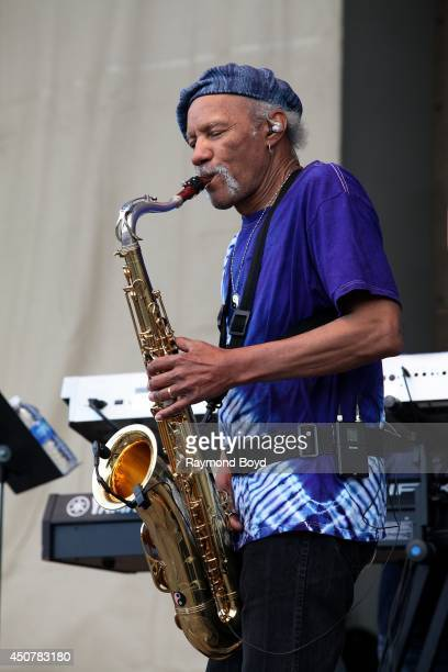 Musician Charles Neville performs on the Petrillo Music Shell during the 31st Annual Chicago Blues Festival on June 15, 2014 in Chicago, Illinois.