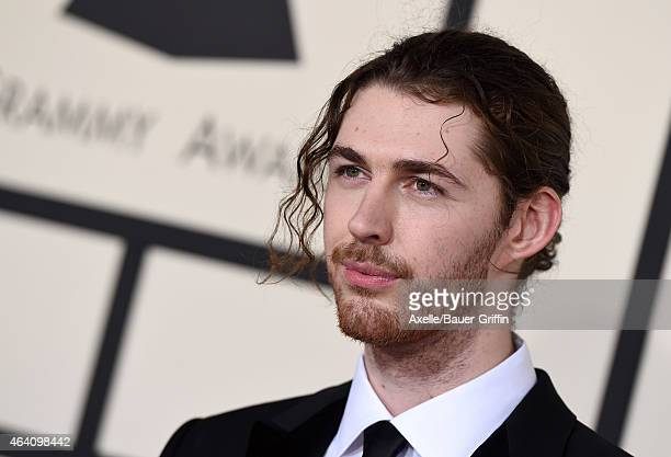 Musician Hozier arrives at the 57th Annual GRAMMY Awards at Staples Center on February 8 2015 in Los Angeles California