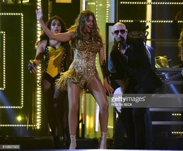 Musician Pitbull and actress Sofia Vergara perform onstage during the 58th Annual Grammy music Awards in Los Angeles February 15 2016 AFP PHOTO/...
