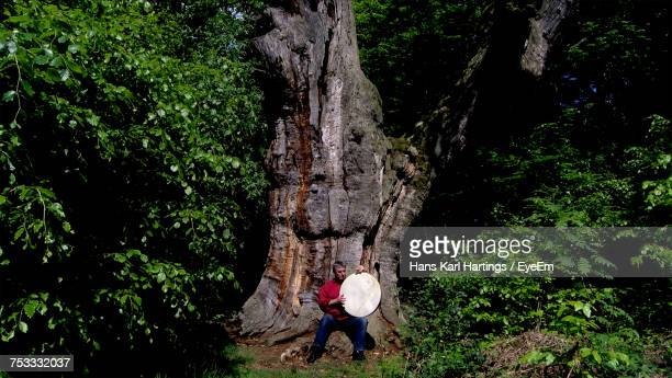 musician playing tambourine against tree trunk in forest - tambourine stock pictures, royalty-free photos & images