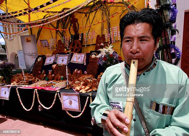 A musician plays huaynos in front of an altar table full of tantawawas breads with human and animal forms sweets cakes fruits chicha and dishes that...