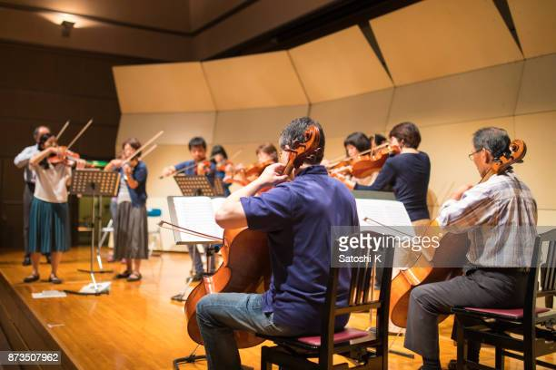 musician rehearsing before the concert - violin family stock photos and pictures