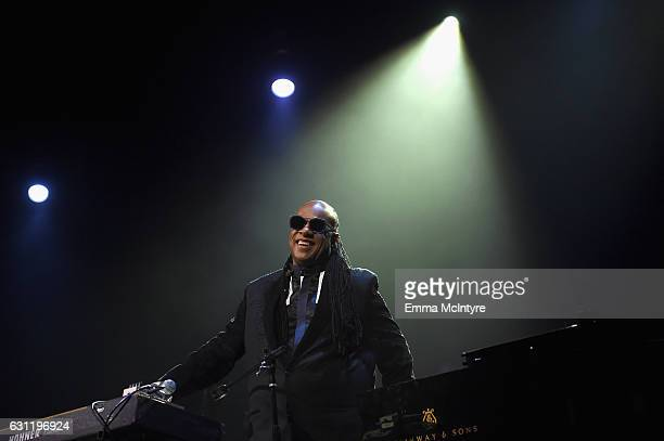 Musician Stevie Wonder performs onstage during The Art of Elysium presents Stevie Wonder's HEAVEN Celebrating the 10th Anniversary at Red Studios on...