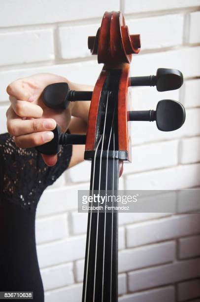 musician tuning cello - musical instrument string stock photos and pictures