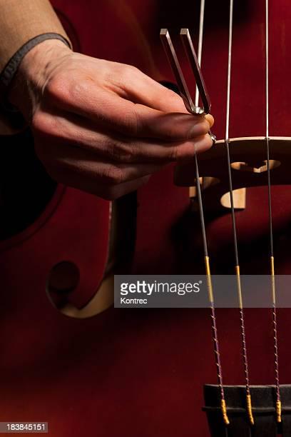 Musicista di tuning il bass (doublebass) con una forchetta di regolazione