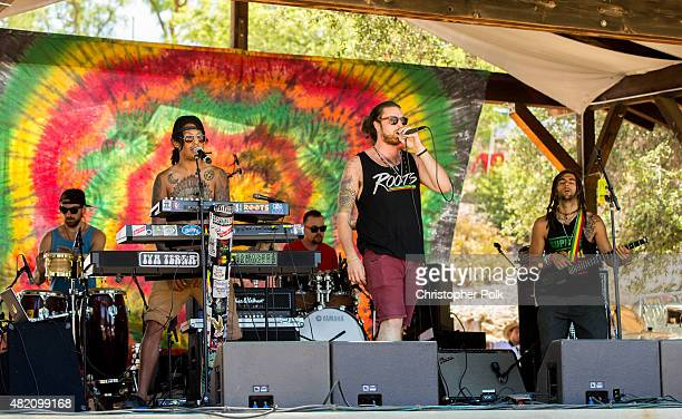 Musicians Danny Monar Luis Tovar Blaze Bartz Nathan Feinstei and Nick Loporchio of the band Iya Terra perform during Reggae On The Mountain 2015 on...