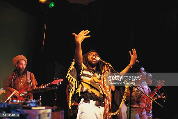 Musicians Performing in Reggae Band