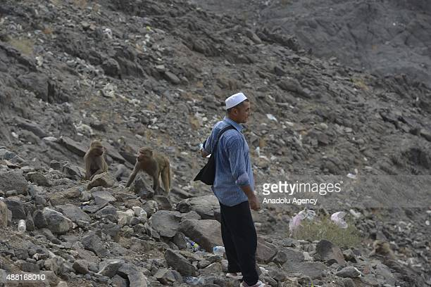 Muslim pilgrim climbs the Jabal alNour to visit Hira Cave ahead of the start of the annual Hajj pilgrimage in Mecca Saudi Arabia on September 14 2015...