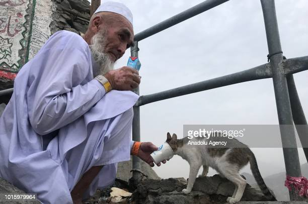 Muslim pilgrim feeds a cat as he visits the Jabal alNour and Hira Cave during the annual Hajj pilgrimage in Mecca Saudi Arabia on August 12 2018 Hira...