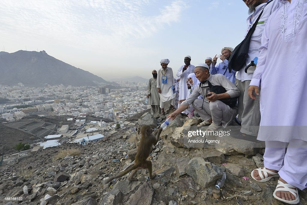 Muslim Pilgrims Visit Hira Cave On Route To Mecca for Hajj : News Photo