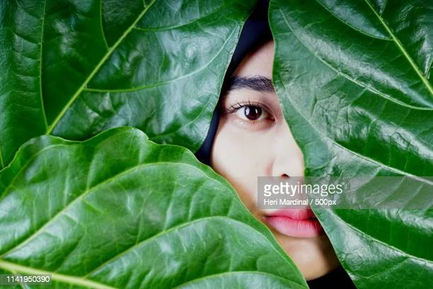 muslim woman face obscured by leaves - heri mardinal stock pictures, royalty-free photos & images