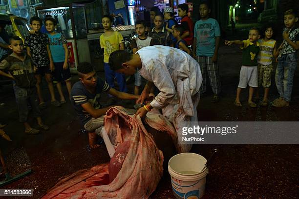 Muslims cutting sheep and cow as offering on Eid alAdha sacrifice feast day in Cairo Egypt on September 25 2015