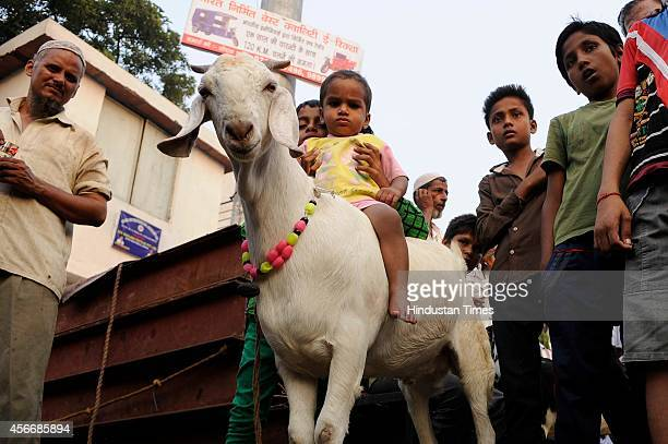 Muslims gather at a livestock market to buy goats ahead of the sacrificial Eid al-Adha festival on October 5, 2014 in Noida, India. Muslims across...
