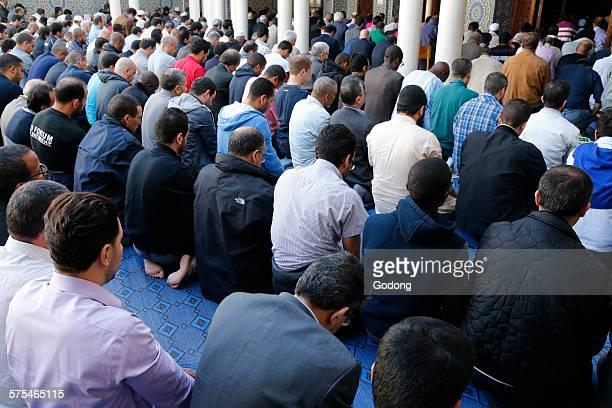 muslims - mosquée photos et images de collection