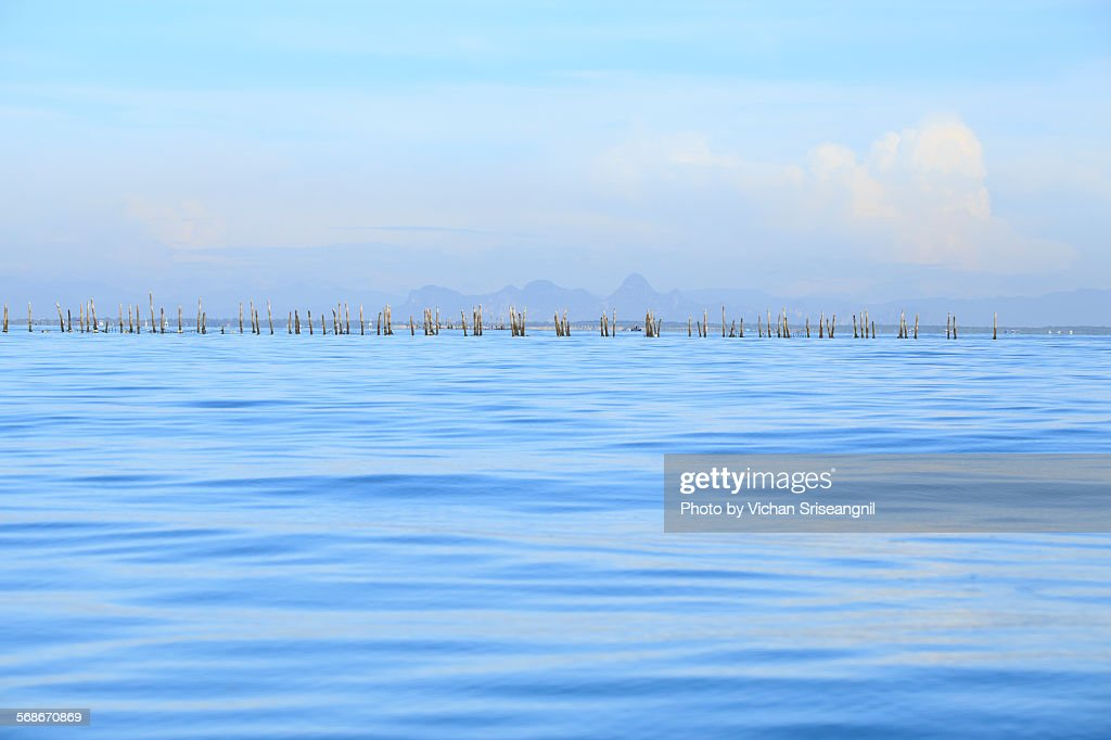 Mussel farm in gulf of Thailand : Stock Photo