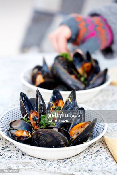 mussels in bowl - mussel stock pictures, royalty-free photos & images