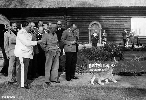 Mussolini visiting Germany at Goering's country estate Carinhall Count Galeazzo Ciano Goering and Benito Mussolini are watching a young lion play...