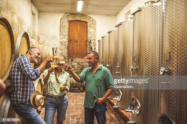 Must Tasting in a Vine Cellar