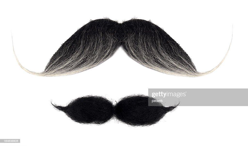 Mustaches auf Weiß : Stock-Foto