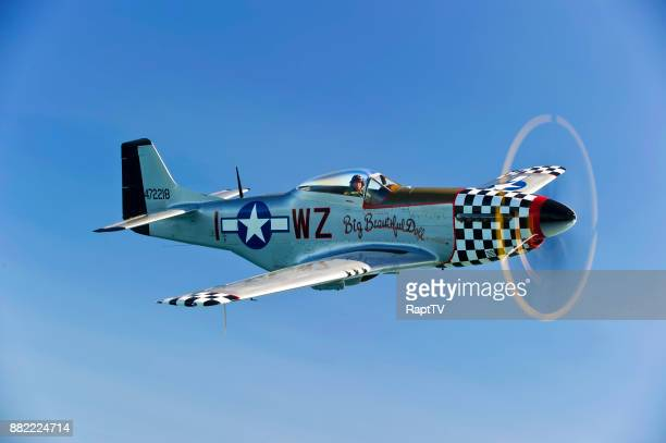 a mustang p-51 and it's pilot with great propeller spin. - p 51 mustang stock photos and pictures