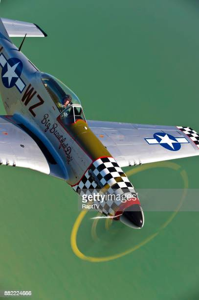 a mustang p-51 pilot flying his plane. - p 51 mustang stock photos and pictures